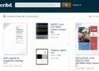 Voir quelques essais et publications sur SCRIBD.